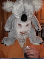 Fashion fail - Poorly Dressed: The Buffalo Bill of Stuffed Animals