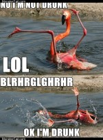 "Monster fail photos: Crunk Critters: ""Check Me Out, I Can Flamingo Dance!"""