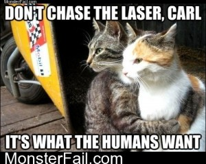 Dont Chase The Laser Carl