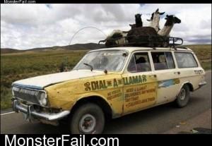 Dial A Llama