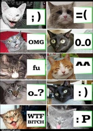 Emoticons by Cats