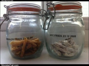 3 year old mcdonalds fries