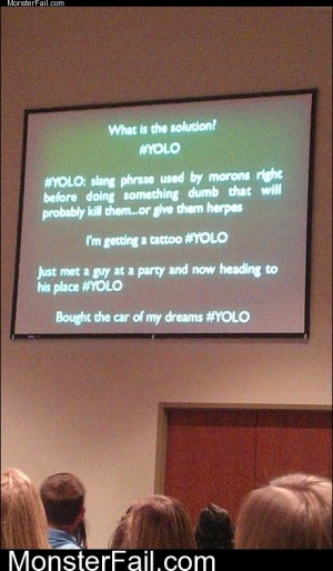 YOLO Explained