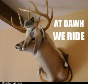 Oh Deer