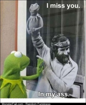 Dat muppet
