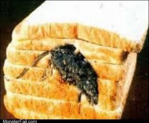 Monster fail  Inbred Mouse FAIL