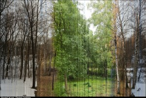 3888 Photos Captured Over One Year Condensed Into One Image