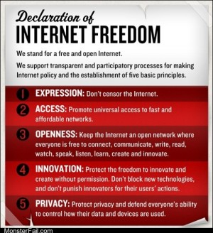 Memes The Daily What Cheezburger Supports the Declaration of Internet Freedom Discuss Here