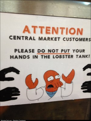 No hands in the lobster tank!