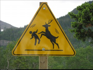 "Random sign – do the ""Dance of the Deer"""