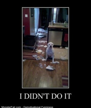 Demotivational  Motivational I Didnt Do It