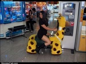 Giraffe rides