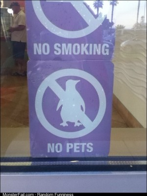 Ok I wont bring my pet penguin