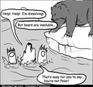 Bear Problems