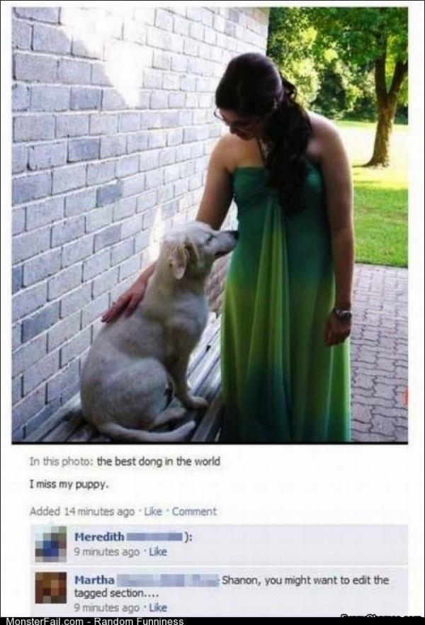 Fail miss My Doggy