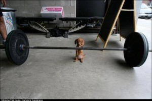 Hes gonna need a spotter