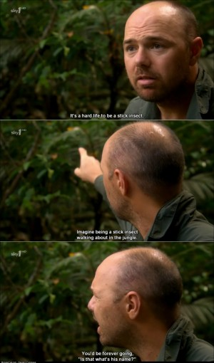 Karl Pilkington on the hardships of being a stick insect
