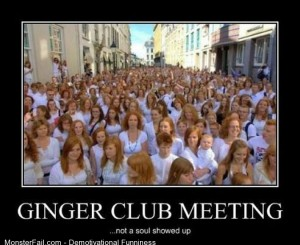 Demotivational  Motivational Ginger Club Meeting