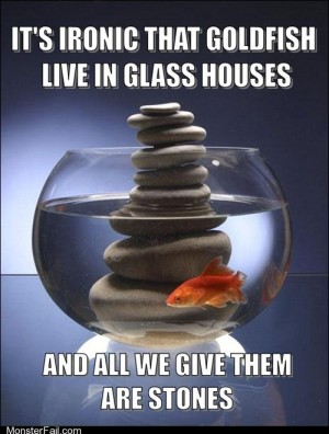 People in glass houses shouldnt throw stones