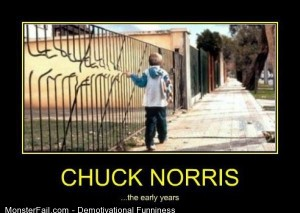 Demotivational  Motivational Chuck Norris