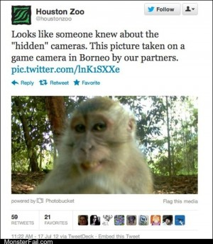 Funny facebook fails Ridiculously Photographic Monkey