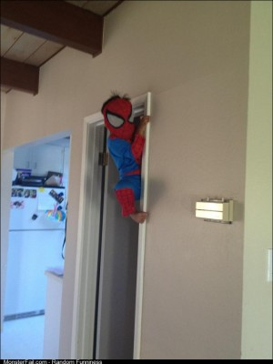 Babysitting spiderman