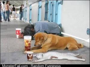 A hrefhttpteabeyondblogspotcom201207tgifbadeconomyhtmlTGIF Bad Economya