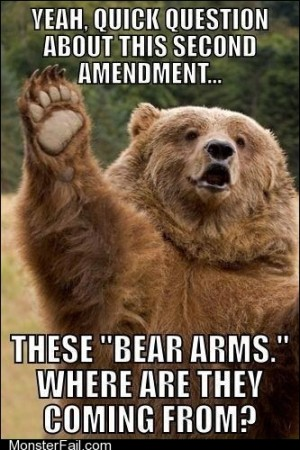 Theyre Bearly Constitutional