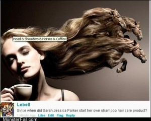 Shampoo fit for horses