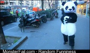 Force of the Panda