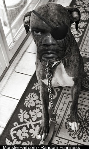So I Photoshopped Samuel L