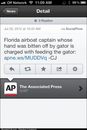 Dont feed the gators