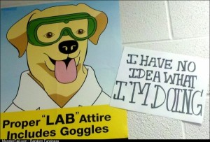 This poster is in my Chem lab