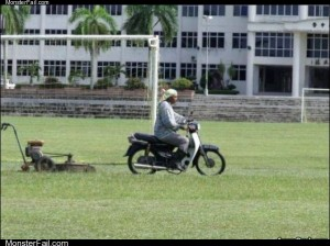 Amazing law mower