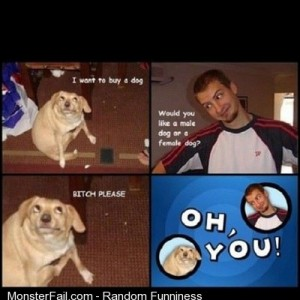 Funny funnypics lol