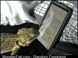 Lizard Plays Smartphone Game