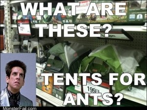 Ants Who Cant Camp Good