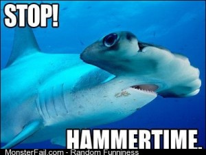 Happy Shark Week