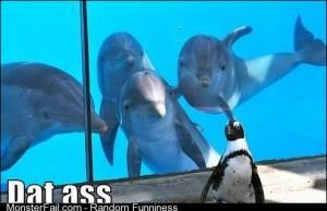 Dat Penguin