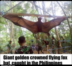 Giant bat