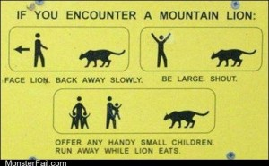 Crazy How to Survive in the Presence of a Mountain Lion