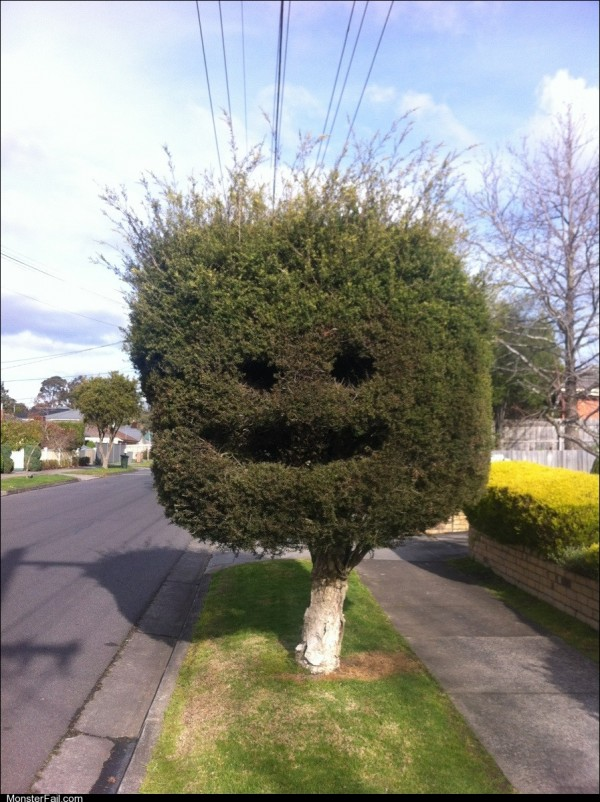 Happy tree is happy
