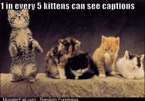 1 in every 5 kittens can see captions