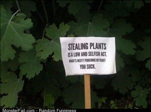 Funny Pics Stealing Plants