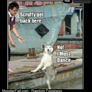 Lmfao dogs dancr lmao
