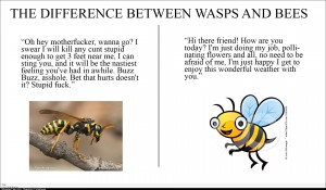 The between bees and wasps
