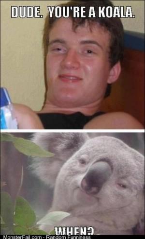 Me Koala When