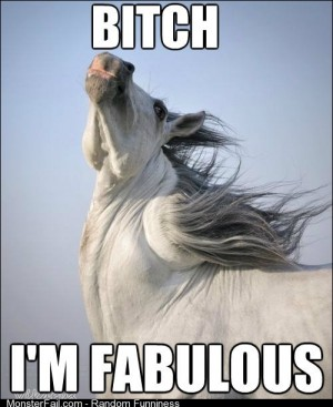 How I feel coming out of the shower after using a shampoo designed for horses and people
