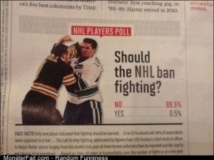 Funny Pics Should The Nhl Ban
