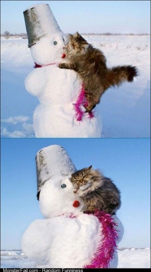 Oh Snowman I love you